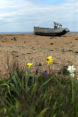 Abandoned shipwreck on beach - p1063m1134985 by Ekaterina Vasilyeva
