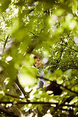 Junge beim Klettern im Baum - p1195m1138123 von Kathrin Brunnhofer