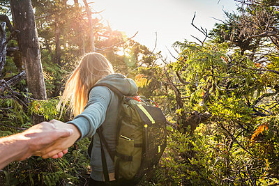 Female hiker leading boyfriend through forest, Pacific Rim National Park, Vancouver Island, British Columbia, Canada - p429m1224138 by Manuel Sulzer