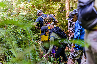 Friends hiking in forest, Johnstone Strait, Telegraph Cove, Canada - p429m2036652 by Alex Eggermont