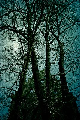 Burgruine bei Vollmond - p470m2244405 von Ingrid Michel