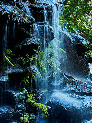 Australia, New South Wales, Waterfall called Wentworth Falls - p1427m1553651 by WalkerPod Images