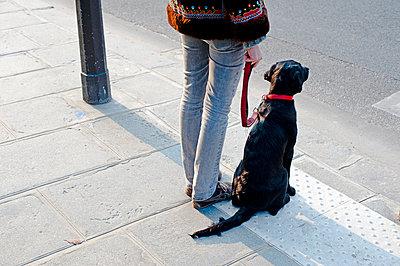 PET - p177m1039853 by Kirsten Nijhof