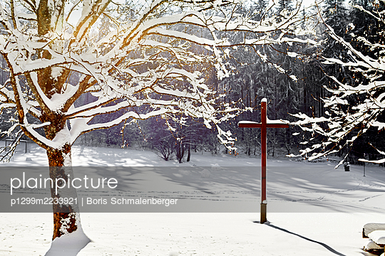 p1299m2233921 by Boris Schmalenberger