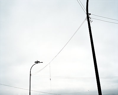 p1083m1215203 by Alain Greloud