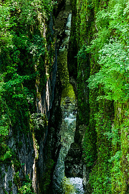 Canyon - p248m1030781 by BY