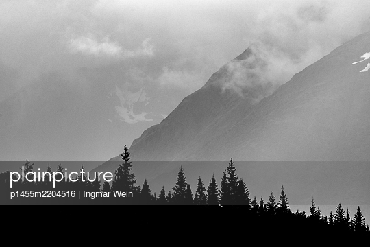 Woodland in front of mountain range in the fog - p1455m2204516 by Ingmar Wein