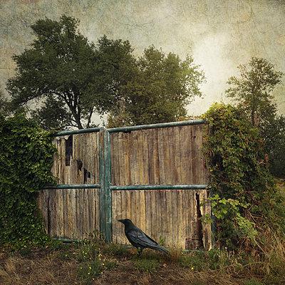 The Gate - p1633m2211127 by Bernd Webler
