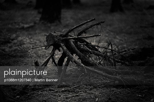 p1088m1207340 by Martin Benner