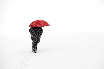 Snow storm - p1312m2054992 by Axel Killian