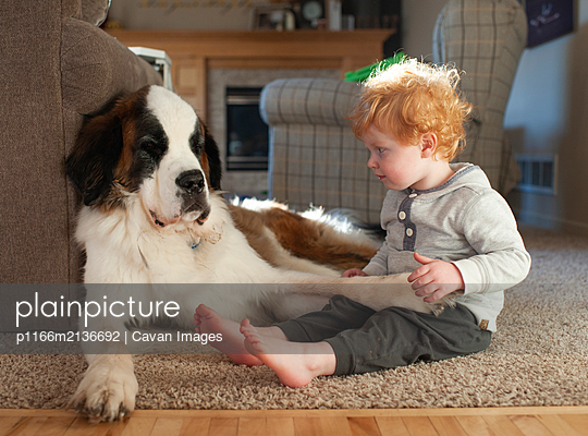 Toddler boy sits on floor next to big dog while holding dog's foot - p1166m2136692 by Cavan Images