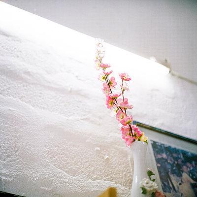 Pink flowers - p9110477 by Benjamin Roulet