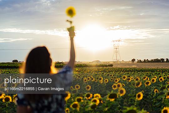p1166m2216855 von Cavan Images