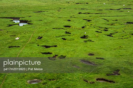 Grüne Wiese - p417m2019923 von Pat Meise