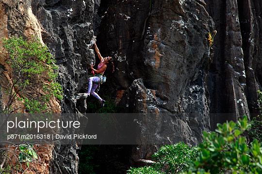 p871m2016318 von David Pickford
