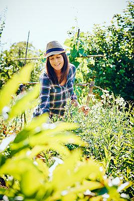 Frau im Garten freut sich - p1312m1176974 von Axel Killian