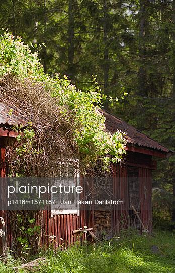 Holzschuppen - p1418m1571187 von Jan Håkan Dahlström