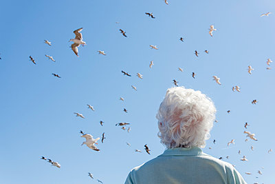 white hair and seagulls - p1201m1051236 by Paul Abbitt