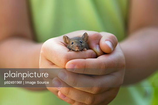 A girl holding a mouse - p9249196f by Image Source