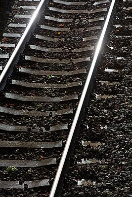 Railway tracks - p1057m2044768 by Stephen Shepherd