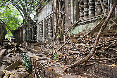 Ta Prohm Temple - p871m757420 by Andrew Stewart