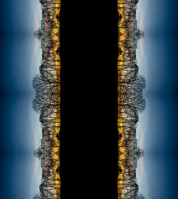 Abstract kaleidoscope repeated parallel pattern of bare winter trees at sunset - p1047m2164384 by Sally Mundy