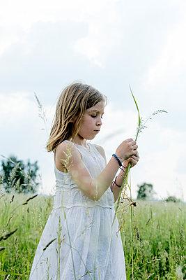 Mädchen im weißen Kleid pflückt Blumen - p1212m1145962 von harry + lidy