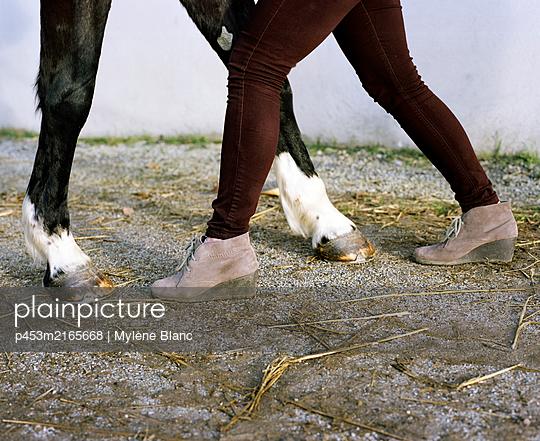 Horse legs and woman legs - p453m2165668 by Mylène Blanc