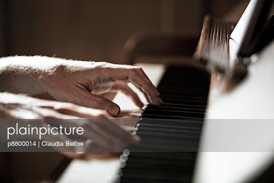 Pianist - p8800014 by Claudia Below