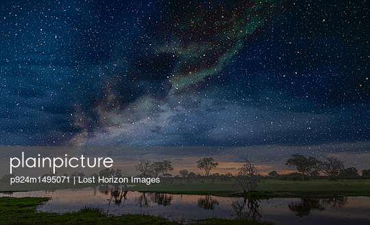 Starry night sky over swamp, Okavango Delta, Botswana, Limpopo, South Africa, Africa