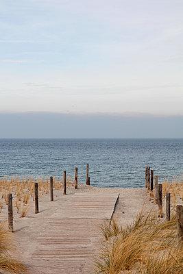 Bohlenweg am Meer - p039m1492677 von Christine Höfelmeyer