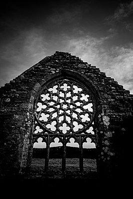 Fensterrrose - p248m1541130 von BY