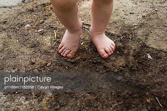 p1166m1182958 von Cavan Images