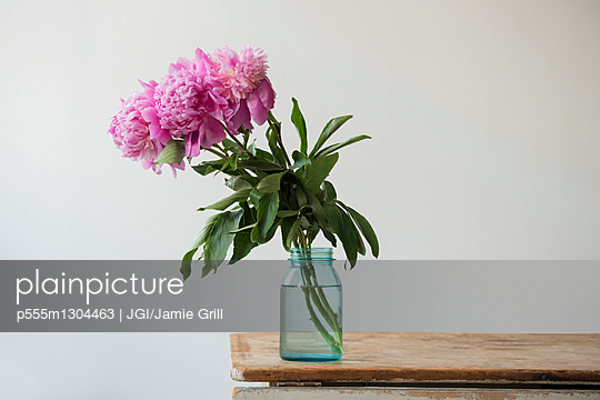 Pink flowers in jar on table
