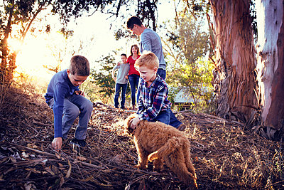 Family enjoying with dog on field amidst trees - p1166m1087924f by Angie Wheeler