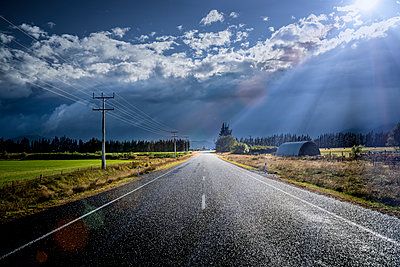 Country road in New Zealand - p1275m1132112 by cgimanufaktur