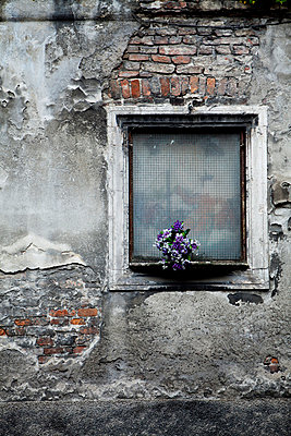 Window of a house in Italy - p7720123 by bellabellinsky