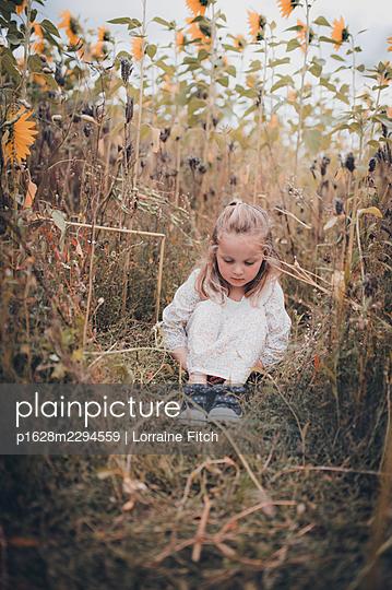 Little girl in sunflower field - p1628m2294559 by Lorraine Fitch