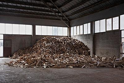 Wood - p1017m788208 by Roberto Manzotti