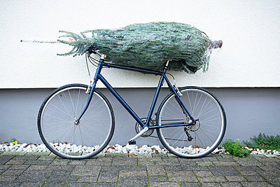 Christmastree on bike - p1149m1511193 by Yvonne Röder