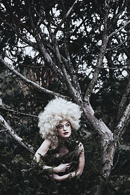 Woman with wig in a tree - p1564m2191655 by wpsteinheisser
