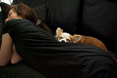 A woman with dog sleeping on a sofa - p301m894544f by Yujiro Tada