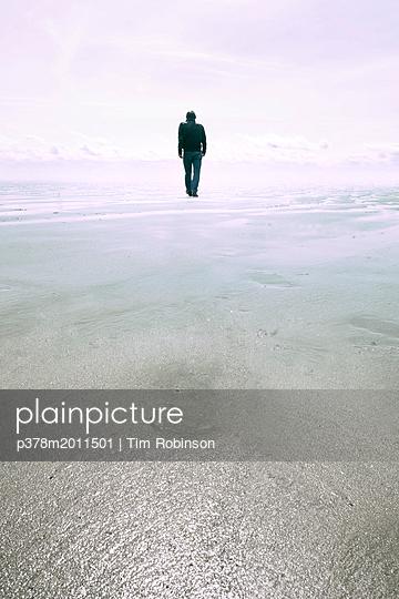 p378m2011501 von Tim Robinson