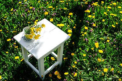 Spring garden. Buttercups - p1412m1516547 by Svetlana Shemeleva