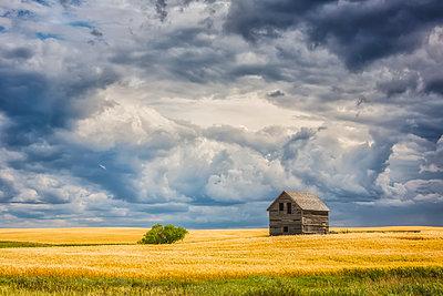 Abandoned building along the roads of rural Saskatchewan; Saskatchewan, Canada - p442m1449125 by Robert Postma