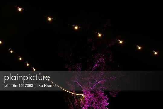 Lila Baum - p1116m1217083 von Ilka Kramer