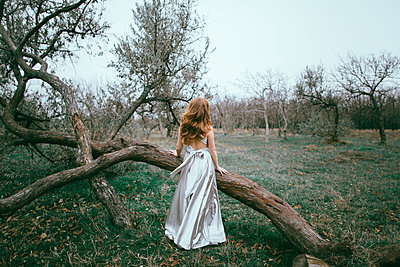 Glamorous location woman standing near fallen tree - p555m1523130 by Kateryna Soroka