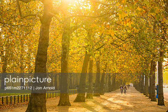 St James's Park, London, England, UK - p651m2271112 by Jon Arnold