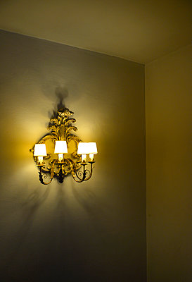 Ornate Wall Light - p1072m2164574 by Neville Mountford-Hoare