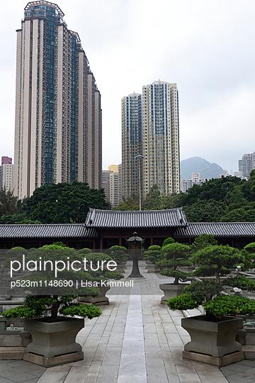 Chi Lin Nunnery, Tempel, Hong Kong - p523m1148690 von Lisa Kimmell